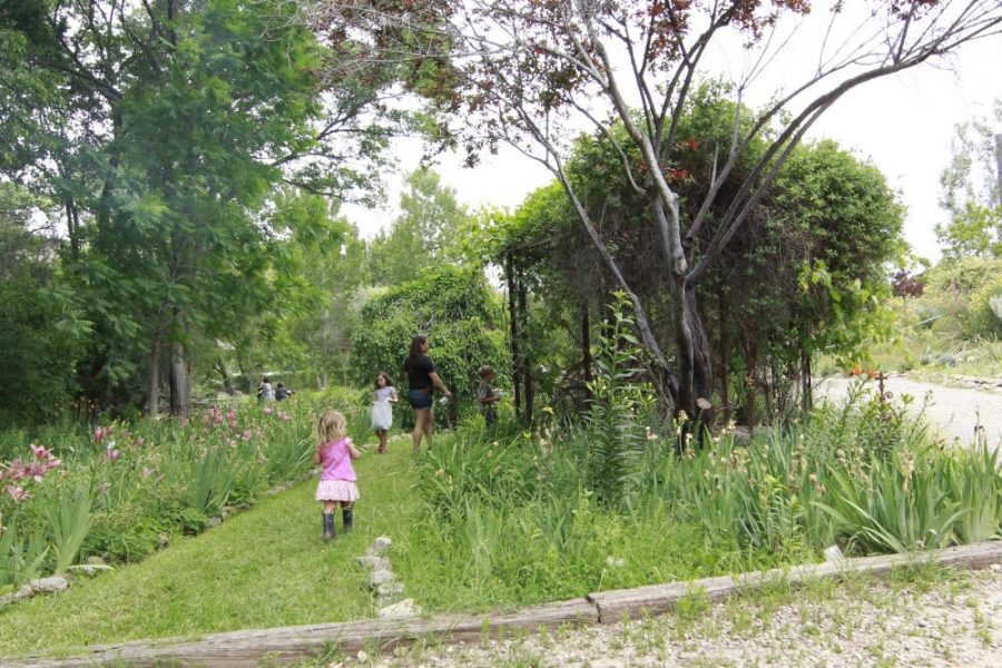 fairy garden ruidoso